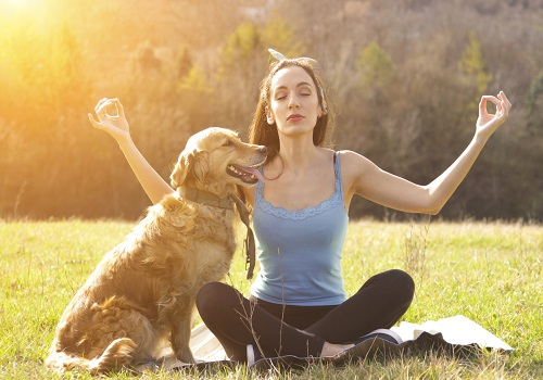 Psychological Benefits Of Living With A Pet: 8 Reasons To Own A Pet