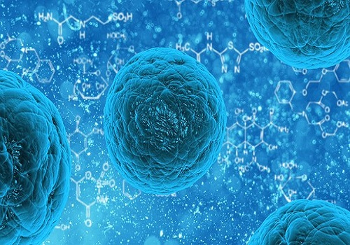 How stem cell transplant cures Cancer?