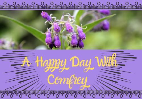 Release Your Happy Hormones - Start Eating Comfrey