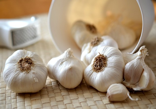 Garlic - A Remedy For Many Problems